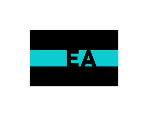 The EA Institute logo - EA and PA courses